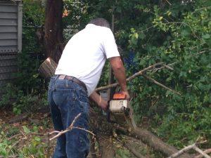 10465-Tree-Service